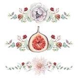 Aquarell mit Blumen und Feigen eingestellt Stockfoto
