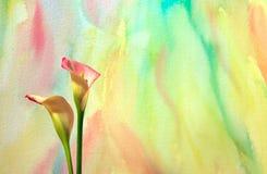 Aquarell mit Calla-Lilien Lizenzfreies Stockfoto