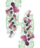 Aquarell-nahtloses Blumen-Muster, weißer Hintergrund Stock Abbildung