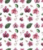 Aquarell-nahtloses Blumenmuster mit tiefroter Orchidee Lizenzfreies Stockfoto