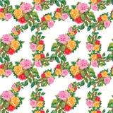 Aquarell-nahtloses Muster mit Rosen Stockbilder