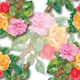 Aquarell-nahtloses Muster mit Rosen Lizenzfreies Stockbild