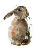 Aquarell-Osterhase mit Schneeglöckchen Handgemalte Karte mit traditionellen Symbolen lokalisiert auf weißem Hintergrund nett Lizenzfreie Stockbilder