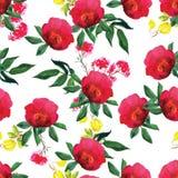 Aquarell rosafarben und nahtloses Vektormuster der Klematis Lizenzfreies Stockfoto