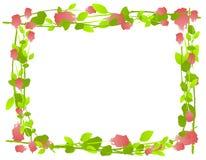 Aquarell-Rose-Feld-Rand stock abbildung