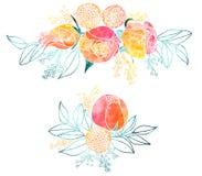 Aquarell-Rosen und Mimosen-Blumensträuße Lizenzfreies Stockbild