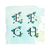 Aquarell Serif Font mit Blättern, grüne Blumen, Frühlings-Sommer-Design für Heiratseinladung, Postkarten, Logo, Sichtidentität Lizenzfreies Stockfoto