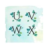 Aquarell Serif Font mit Blättern, grüne Blumen, Frühlings-Sommer-Design für Heiratseinladung, Postkarten, Logo, Sichtidentität Stockbilder