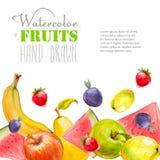 Aquarell trägt Hintergrund Früchte Fahne des biologischen Lebensmittels Lizenzfreies Stockbild