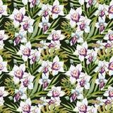 Aquarell-tropisches Muster Stockfotos