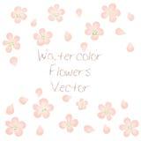 Aquarell-Vektor-Blumen Vektor Watercolour-Blumen Stockbild