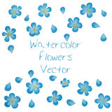 Aquarell-Vektor-Blumen Vektor Watercolour-Blumen Lizenzfreies Stockbild