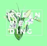 Aquarell-weiße Tulpen-Zusammensetzung Grüne Hochzeit Stockbild