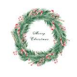 Aquarell-Weihnachten eingestellt mit Niederlassungen eines Weihnachtsbaums, der Bälle, der Bonbons, des Handschuhs und der Socke  lizenzfreie abbildung