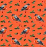 Aquarell-Weihnachtsnahtloses Muster mit rotem Wintervogeldompfaff Stockbild