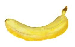 Aquarellbild der Banane Stockbild