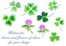 Aquarellblätter und Blumen des Klees für Ihr Design Lizenzfreies Stockfoto
