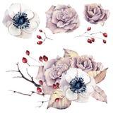 Aquarellblumen eingestellt Stockbild