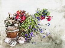 Aquarellblumen, -kessel und -oberteile Lizenzfreies Stockfoto