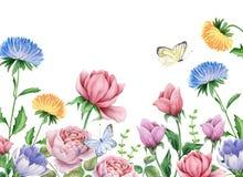 Aquarellblumen und -schmetterlinge auf Weiß Lizenzfreie Stockbilder