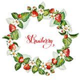 Aquarellblumenhintergrund mit Erdbeeren ENV-Datei ist vorhanden Feld mit Aquarellerdbeeren Lizenzfreies Stockfoto