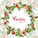 Aquarellblumenhintergrund mit Erdbeeren ENV-Datei ist vorhanden Feld mit Aquarellerdbeeren Lizenzfreie Stockbilder