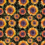 Aquarellblumenmuster lizenzfreie abbildung