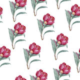 Aquarellblumenmuster Stockbild