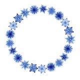 Aquarellblumenrahmen Stockbilder