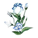 Aquarellblumenstrauß Stockfoto