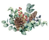 Aquarellblumenstrauß mit Eukalyptusblättern, -kegel und -beeren Handgemalte grüne Eukalyptusbrunch-, Rote und Blauebeeren vektor abbildung
