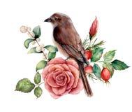 Aquarellblumenstrauß mit Vogel und stieg Handgemalte Blumenillustration mit rosa Blume, dogrose, Snowberries, Blätter lizenzfreie abbildung