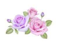 Aquarellblumenstrauß von Rosen Stockfotografie