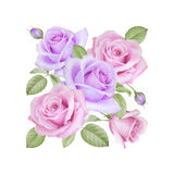 Aquarellblumenstrauß von Rosen Stockfotos