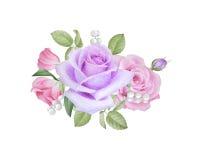 Aquarellblumenstrauß von Rosen und von lisianthus Stockfoto
