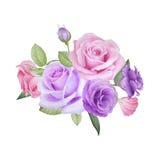 Aquarellblumenstrauß von Rosen und von lisianthus Lizenzfreies Stockbild
