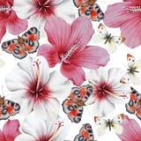 Aquarellblumenstrau? mit Blumen und Schmetterlingen hibiscus Abbildung lizenzfreie stockbilder