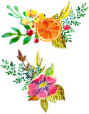 Aquarellblumenzusammensetzungen Stockfotos