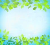 Aquarelle abstraite d'été illustration de vecteur