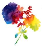 Aquarelle abstraite de fleur Photo stock