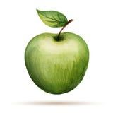 Aquarelle Apple Photographie stock libre de droits