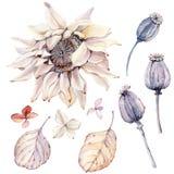 Aquarelle Autumn Composition illustration de vecteur