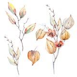 Aquarelle Autumn Composition illustration libre de droits