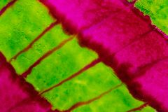 Aquarelle avec les lignes diagonales vertes et roses au néon Image libre de droits