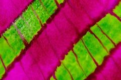 Aquarelle avec les lignes diagonales vertes et roses au néon Photo stock