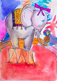 Aquarelle d'éléphant de cirque illustration de vecteur