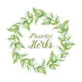 Aquarelle d'herbes de la Provence de carte de voeux Photo libre de droits