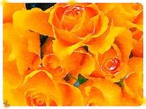 Aquarelle de Digital d'un bouquet des roses oranges Photo libre de droits