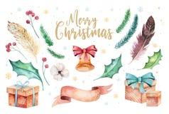 Aquarelle de Joyeux Noël réglée avec les éléments floraux Collection d'affiche de lettrage de bonne année Fleur d'hiver et Image stock