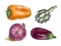 Aquarelle de légumes Photo stock